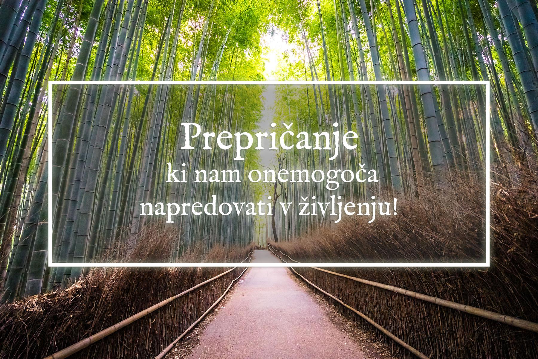 Prepričanje ki nam onemogoča napredovati v življenju