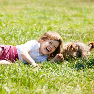 happy three year old child playing with puppy at grass meadow in summer